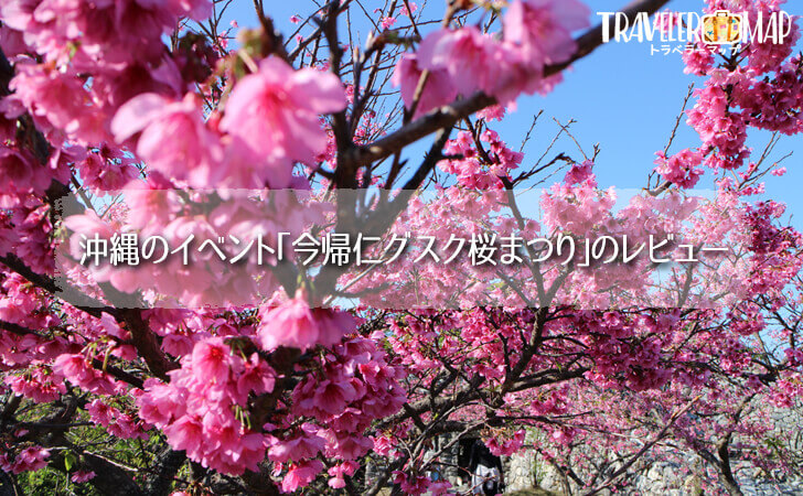 沖縄のイベント「今帰仁グスク桜まつり」のレビュー