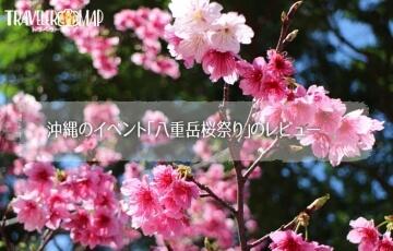 沖縄のイベント「八重岳桜祭り」のレビュー