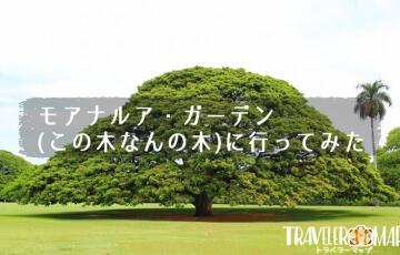 モアナルア・ガーデン(この木なんの木)に行ってみた
