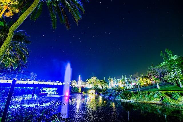 東南植物楽園のひかりの遊歩道