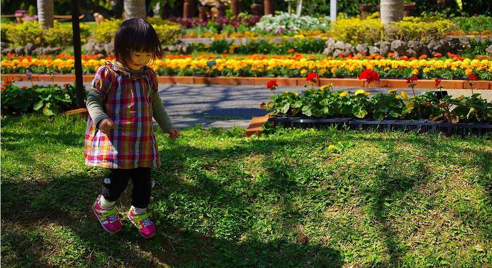 第8回沖縄こどもの国花まつり2017