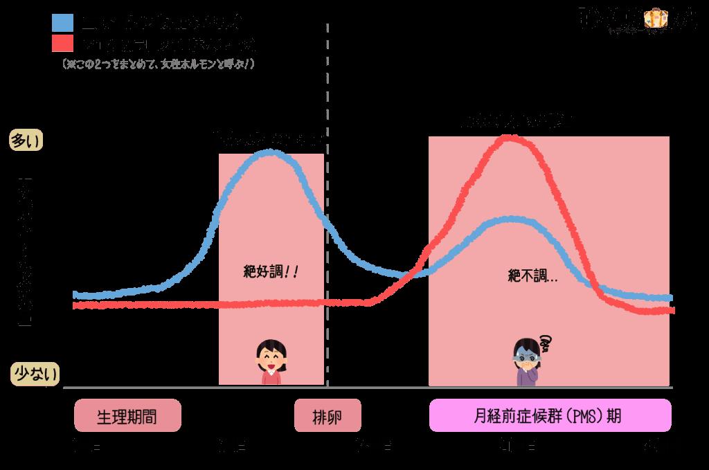 女性ホルモンの変化図
