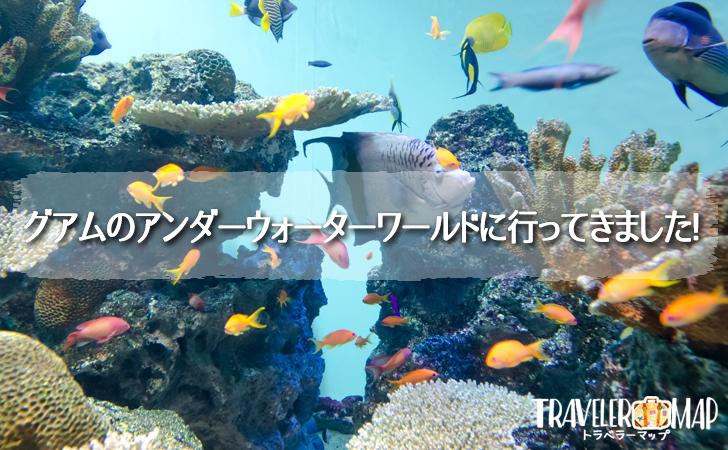 グアムのアンダーウォーターワールド(水族館)に行ってみた