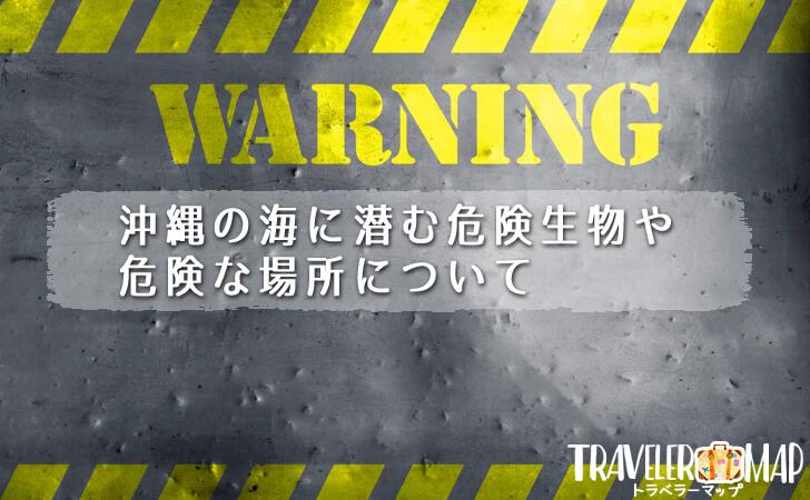 沖縄の海に潜む危険生物や危険な場所について