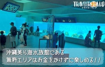 美ら海水族館にある無料エリアはお金をかけずに楽しめる