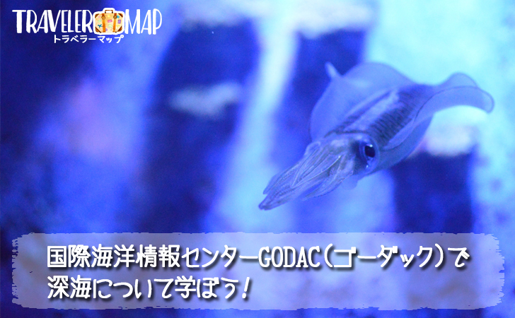 国際海洋情報センターGODACについて
